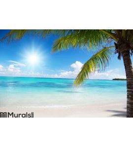 Sea and coconut palm Wall Mural