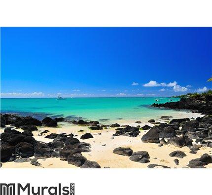 Summer Holiday at Mauritius Wall Mural Wall art Wall decor