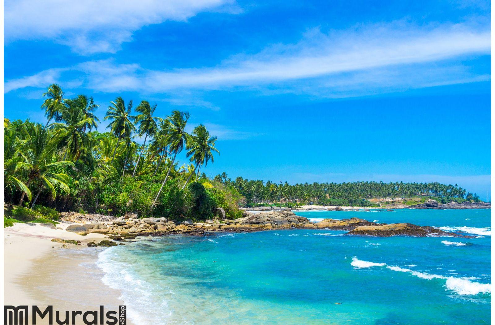 Tropical beach in Sri Lanka Wall Mural
