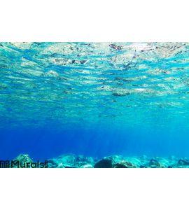 Underwater background of Aegean Sea Wall Mural Wall art Wall decor