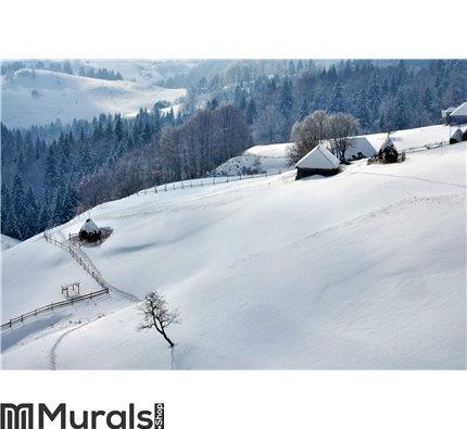 Winter Landscape in Romania Wall Mural Wall art Wall decor