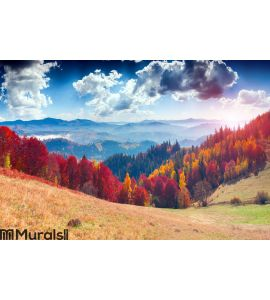 Colorful autumn landscape in the mountain village. Foggy morning Wall Mural