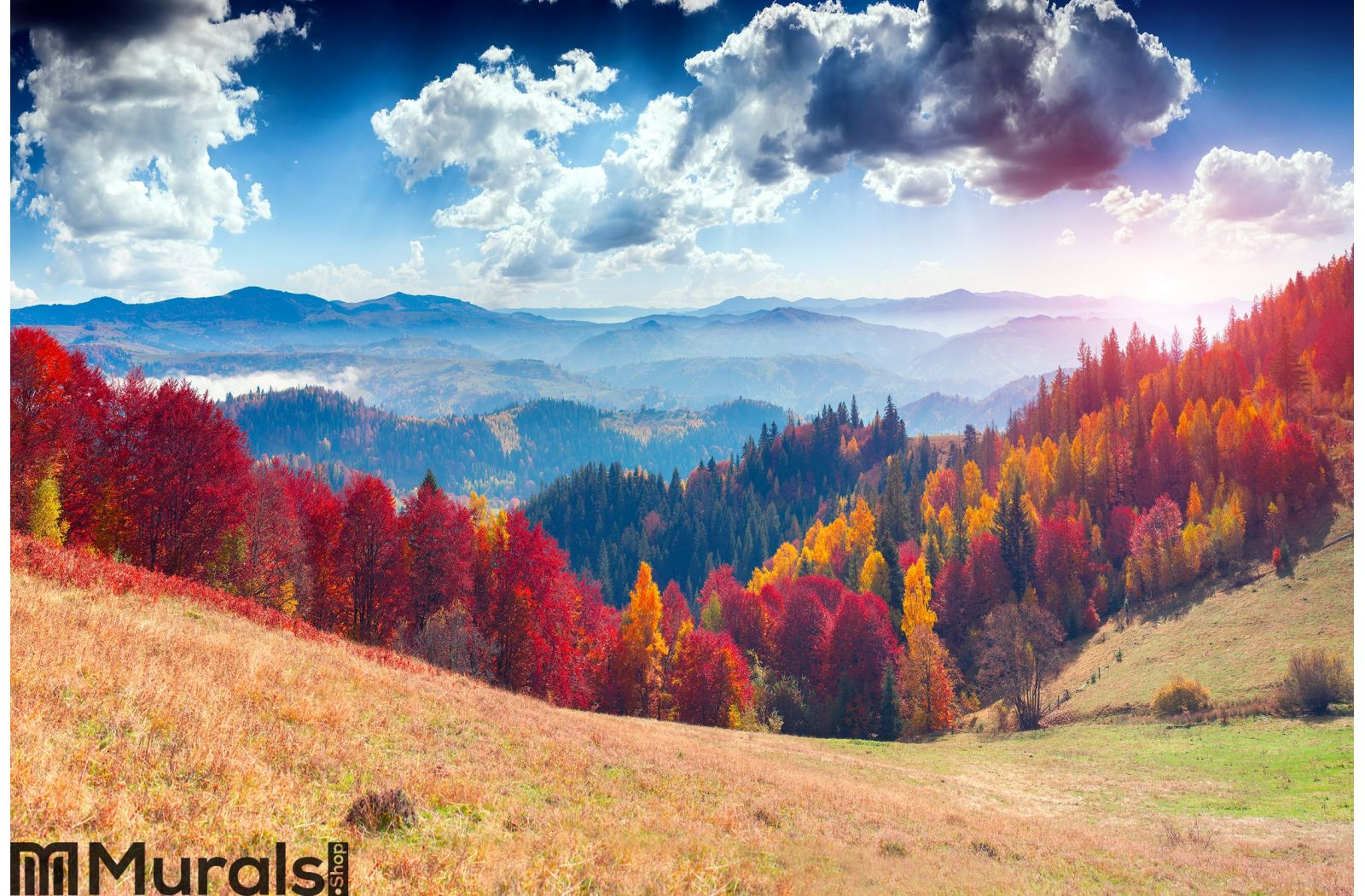 Colorful Autumn Landscape In The Mountain Village Foggy