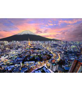 Tokyo and Fuji Wall Mural