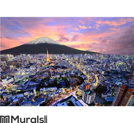 Tokyo and Fuji Wall Mural Wall art Wall decor