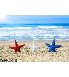 Starfish on beach during July fourth Wall Mural