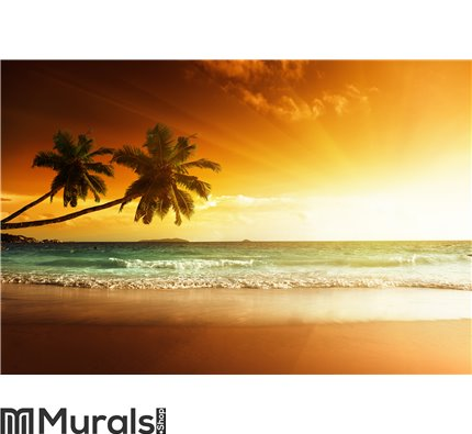 Sunset on the beach of sea Wall Mural Wall art Wall decor