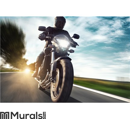Motorcycle Wall Mural