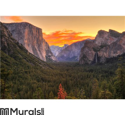 Breathtaking Yosemite national park at sunrise - dawn, California Wall Mural Wall art Wall decor