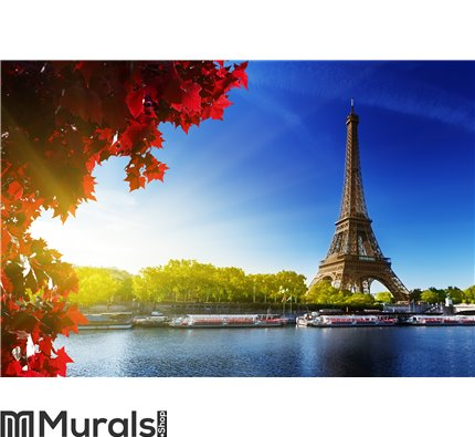 Color of autumn in Paris Wall Mural
