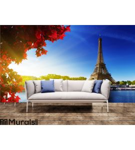 Color of autumn in Paris Wall Mural Wall art Wall decor