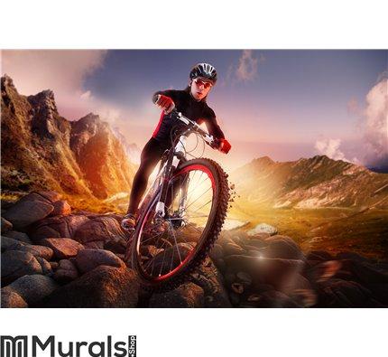 Mountain Bike cyclist riding Wall Mural Wall art Wall decor