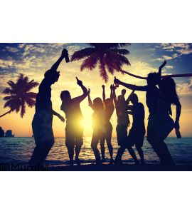 People Teenagers Summer Enjoying Beach Party Concept Wall Mural