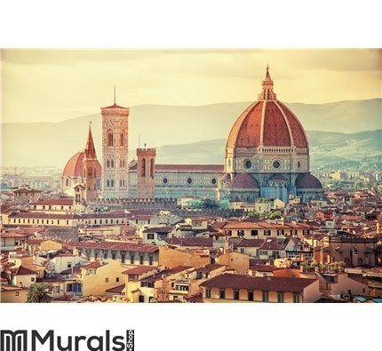 Beautiful Florence Wall Mural Wall art Wall decor