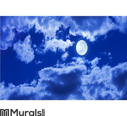 Full Moon Clouds Sky Wall Mural Wall art Wall decor