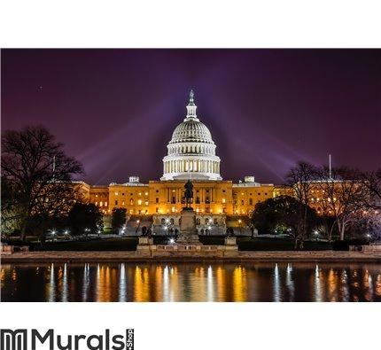 United States Capitol Building, Washington DC Wall Mural Wall art Wall decor