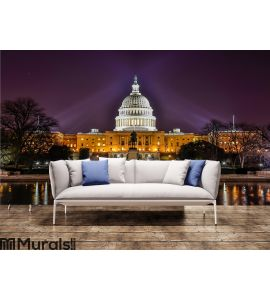 United States Capitol Building, Washington DC Wall Mural Wall art Wall decor