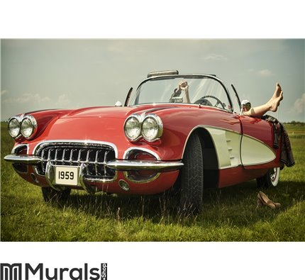 Vintage car Wall Mural Wall art Wall decor