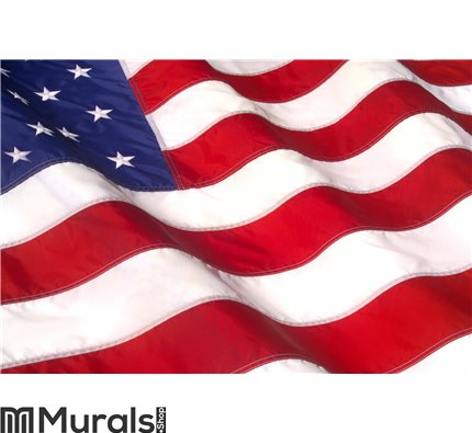 Waving American Flag Wall Mural