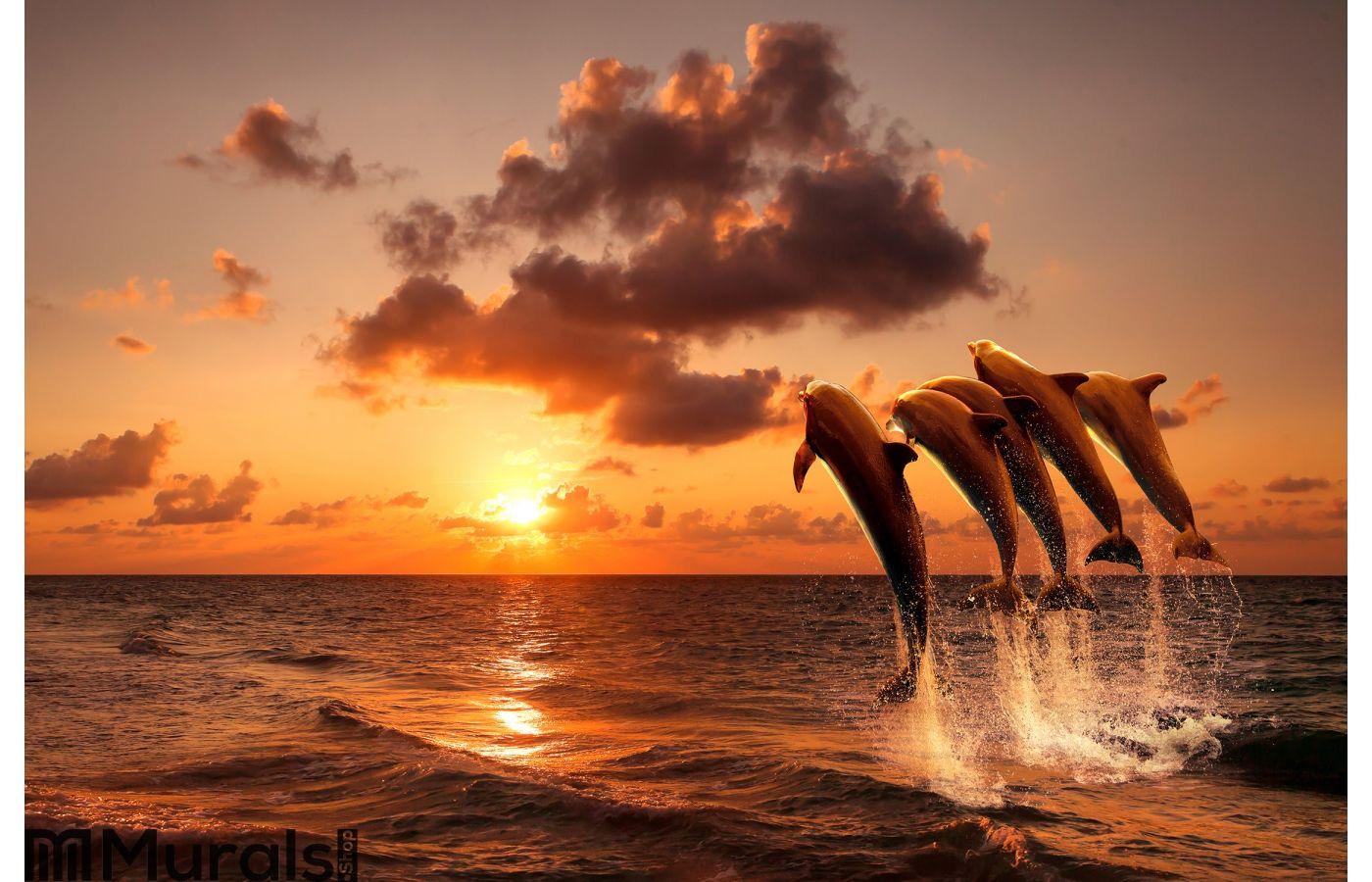 sunset at rocky ocean jetty wall mural beautiful sunset with dolphins wall mural