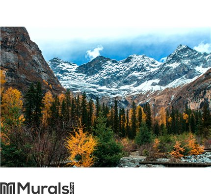 Witness the beauty of nature Wall Mural Wall art Wall decor