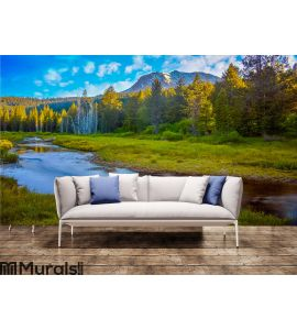Mount Lassen Wall Mural Wall art Wall decor