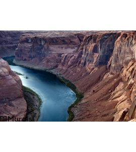 Colorado River Wall Mural