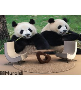 Two lovely pandas eating bamboo Wall Mural Wall art Wall decor