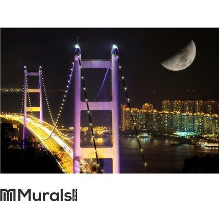 Night scenes of Tsing Ma Bridge Wall Mural Wall art Wall decor