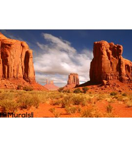 Framed Landscape Image of Monument Valley Wall Mural