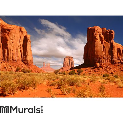 Framed Landscape Image of Monument Valley Wall Mural Wall art Wall decor
