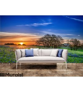 Texas bluebonnet field at sunrise Wall Mural Wall art Wall decor