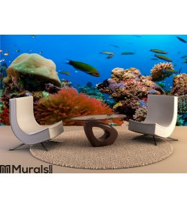 Coral reef Wall Mural Wall Tapestry tapestries
