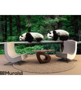 baby Pandas Wall Mural