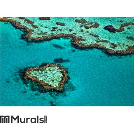Great Barrier Reef Wall Mural Wall art Wall decor