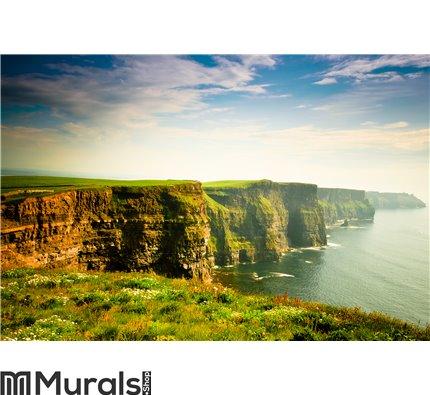 Cliffs Of Moher under cloudy sky, Ireland Wall Mural Wall art Wall decor