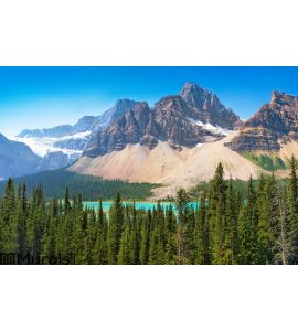 Canadian wilderness in Banff National Park Wall Mural