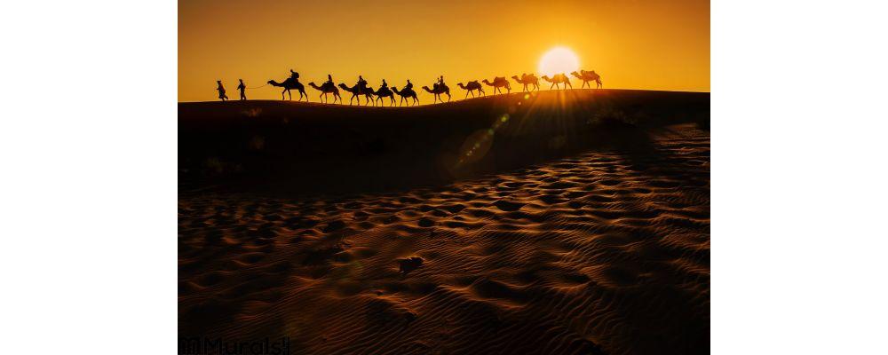 Camel Caravan Wall Mural