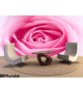 Pink Rose Wall Mural Wall art Wall decor