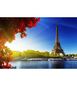 Color Autumn Paris Wall Mural Wall art Wall decor