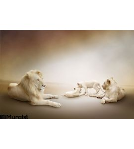 White Lion Family Wall Mural