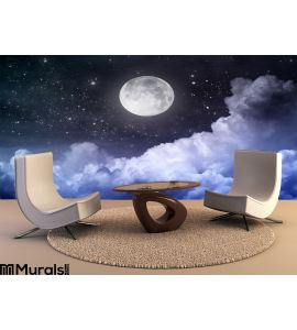 Night Sky Wall Mural Wall art Wall decor