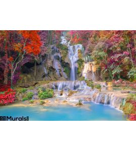 Waterfall Rain Forest Tat Kuang Si Waterfalls Luang Praba Wall Mural Wall art Wall decor
