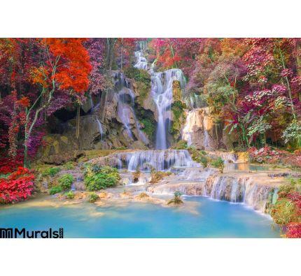 Waterfall Rain Forest Tat Kuang Si Waterfalls Luang Praba Wall Mural Wall art Wall decor