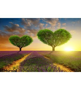 Lavender Fields Trees Shape Heart Sunset Wall Mural Wall art Wall decor