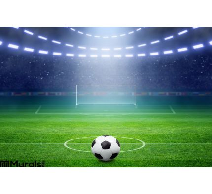 Soccer Stadium Wall Mural Wall art Wall decor