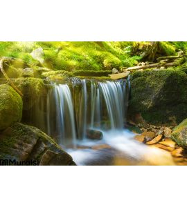 Waterfall Forest Wall Mural Wall art Wall decor