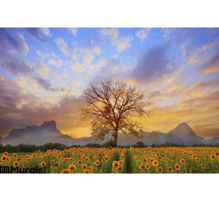 Beautiful Landscape Dry Tree Branch Sun Flowers Field Against Colorful Evening Dusky Sky Use As Natural Background BacWall Mural
