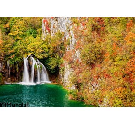 Waterfall Autumn Forest Wall Mural Wall art Wall decor