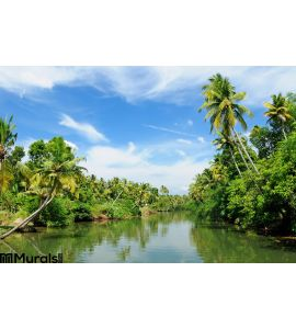 India Kerala Canal Wall Mural Wall art Wall decor